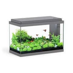 Aquarium Sarawak, gris - 40 litres