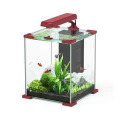 Aquarium Nano Cube Sarawak poisson d'eau douce, rouge - 16,7 litres