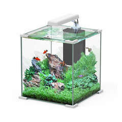 Aquarium Nano Cube Sarawak poisson d'eau douce, blanc - 32,2 litres