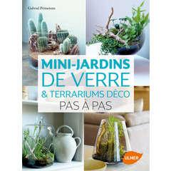 Mini jardins de verre