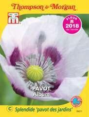 Pavot Album graines en sachet