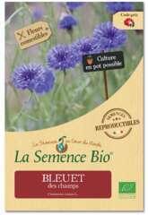 Graines de fleurs Bleuet des champs Bio