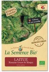 Graines potagères laitue Romaine Grasse de Morges Bio en sachet