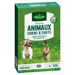 Prairie animaux chiens & chats : en boite