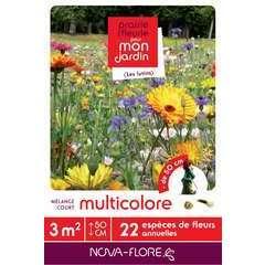 Mélange court multicolore : boite