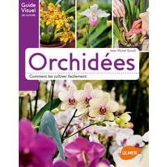 Orchidées guide visuel