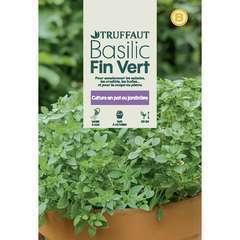 Graines de basilic fin vert en sachet