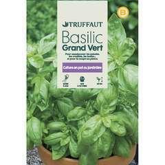 Graines de basilic grand'vert en sachet