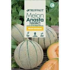 Graines de melon anasta Hybride F1 en sachet