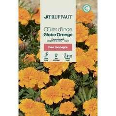 Oeillet d'inde globe orange 1 g