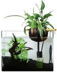 Kit filtration naturelle Coco40 aquaponie aquarium <40 L