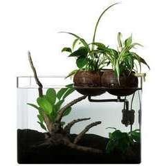 Kit de filtration naturelle Coco80 aquaponie pour aquarium <80 L