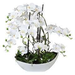 Orchidee artificielle 9 hampes en coupe Ceramique Blanc H 70 cm magist