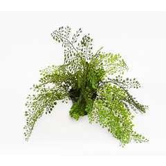 Adiantum plante verte artificielle en pot D 45 cm tres originale