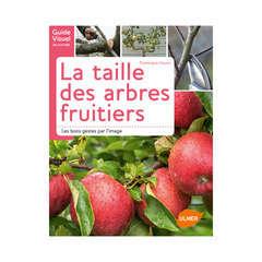 La taille facile des arbres fruitiers