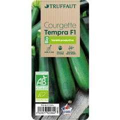 Plant de courgette 'Tempra' F1 bio : pot de 0,5 litre