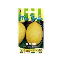 Graines de Melon Jaune des Canaries