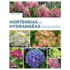 Hortensias & Hydrangeas d'aujourd'hui