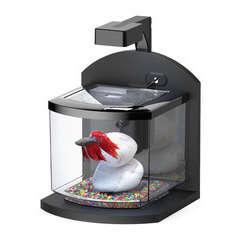 Aquarium Bettalux poisson d'eau douce, noir - 6 litres
