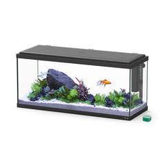 Aquarium explorer amsterdam 80 noir led
