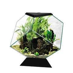 Aquarium nexus 14 L diamond noir