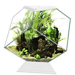 Aquarium nexus 14L diamond blanc