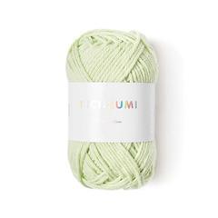 Pelote Créative Ricorumi DK vert pastel