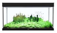 Aquarium fusion 120x50 cm  noir
