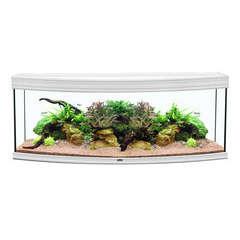 Aquarium fusion horizon 150 blc