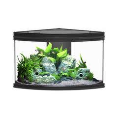 Aquarium fusion corner noir