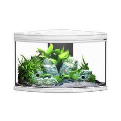 Aquarium fusion corner blanc