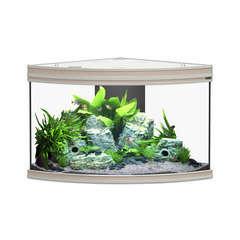 Aquarium fusion corner noyer