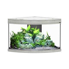 Aquarium fusion corner beton