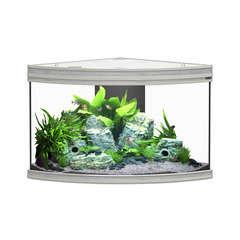 Aquarium fusion corner gris