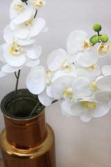 Lot de 3 tiges d'Orchidées blanches + feuilles 'toucher naturel' 60cm