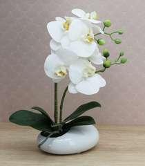 Orchidée blanche artificielle toucher naturel coupe blanche 36cm