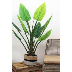 Alocasia artificiel 9 feuilles H125 cm pot noir