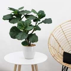Ficus lyrata artificiel en pot céramique blanc 63 cm