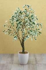 Ficus artificiel panaché en pot céramique blanc 70 cm
