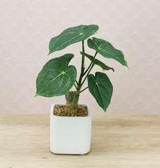 Plante philodendron artificielle pot céramique carré blanc mat 26 cm