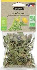 Herbes aromatiques Feuilles de Pissenlit Bio Eden