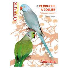 Oiseaux Passion : La Perruche à collier