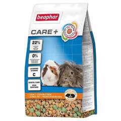 Aliment Premium Care+ pour Cobaye - 250g