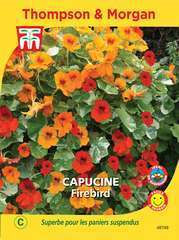 Capucine Firebird