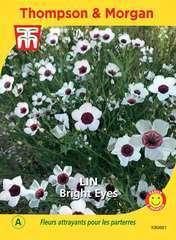 Lin Bright Eyes