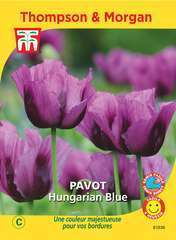 Pavot Hungarian Blue