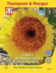 Souci Crown Yellow
