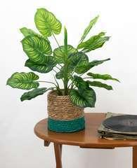 Plante verte zèbre artificielle au 'toucher naturel' 45cm