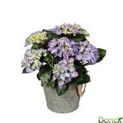 Hortensia 7 fleurs Cache-pot Zinc D23H45cm