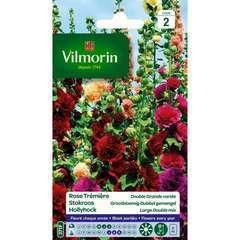 Rose Trémière Double Grande Variée 1,5 g